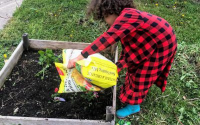 GARDENING 101: A Summer Home Economics Course with GF Mom Certified Tiffany Hinton